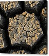 Cracked, Dried Out Mud, Mokolodi Nature Canvas Print