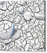 Cracked Earth Canvas Print