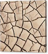Cracked Earth On Desert Floor Bed Canvas Print