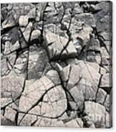 Cracked Rocks On Shore Canvas Print
