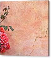 Cracked Wall And Rose Canvas Print