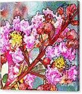 Crape Myrtle Blank Greeting Card Canvas Print