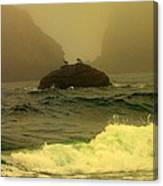 Crashing Waves And Fog Canvas Print