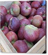 Crate Of Apples Canvas Print