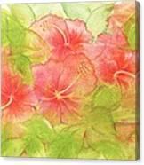 Creamsicle Hibiscus Canvas Print