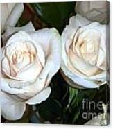 Creamy Roses I Canvas Print