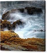 Creamy Wave Canvas Print