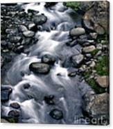 Creek Flow Panel 3 Canvas Print