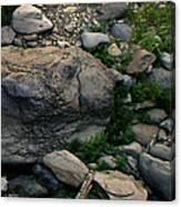 Creek Flow Panel 5 Canvas Print