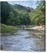 Creek Near Camp Verde  9107 Canvas Print