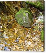 Creek Stones Canvas Print