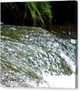 Creek Water Splash Canvas Print
