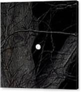Creepy Tree And Full Moon Canvas Print