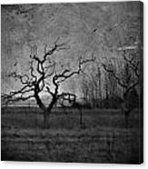 Creepy Way Home Canvas Print