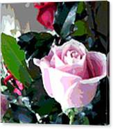 Cropped Clipped Pink Canvas Print