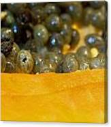 Cross Section Of A Cut Papaya With The Fruit And The Seeds Canvas Print