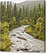 Crossing The Stream In Denali Canvas Print