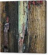 Croydon Barn Canvas Print
