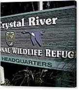 Crystal River Canvas Print