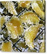 Crystallized Ginger Canvas Print