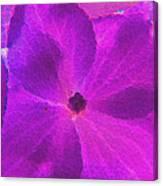 Crystelized Hydrangea Bloom Art Canvas Print