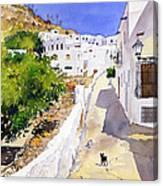Cuesta De La Atalaya Nijar Canvas Print