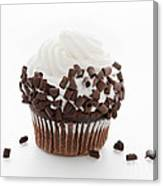 Curly Q Chocolate Cupcake Canvas Print