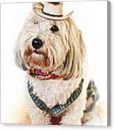 Cute Dog In Halloween Cowboy Costume Canvas Print