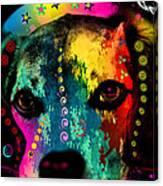 Cute Dog  Canvas Print