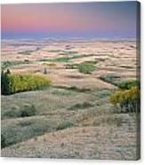 Cypress Hills Interprovincial Park Canvas Print