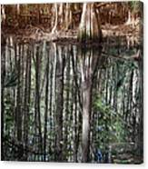 Cypress Swamp Reflections Canvas Print