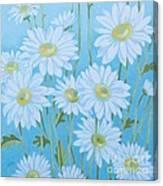 Daisies # 3 Canvas Print