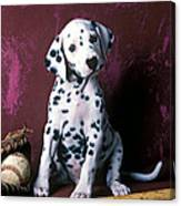 Dalmatian Puppy With Baseball Canvas Print
