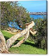 Dana Point Harbor Channel Canvas Print