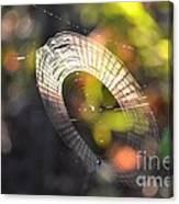 Dappled Web Of Deceit Canvas Print