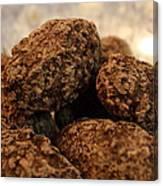 Dark Chocolate Almonds Canvas Print