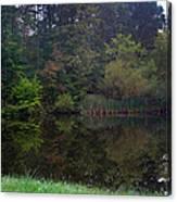 Dark Lake 1 Canvas Print