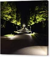 Dark Pathway Canvas Print