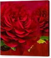 Dark Pink Rose Canvas Print
