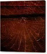 Dark Web Canvas Print