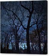 Darkness Canvas Print