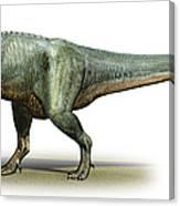 Daspletosaurus Torosus, A Prehistoric Canvas Print