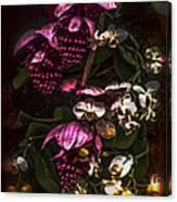 Davinci Orchid Wall Canvas Print