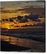 Dawn Of A New Year Canvas Print