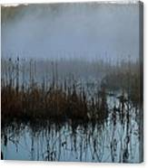 Daybreak Marsh Canvas Print