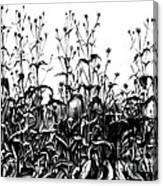 De Vries Experimental Garden Canvas Print