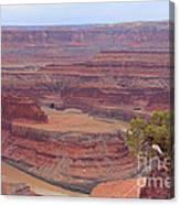Dead Horse Point State Park Canvas Print