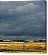 Dead Tree At Dusk With Storm Clouds Canvas Print