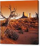 Dead Tree In Desert Monument Valley Canvas Print