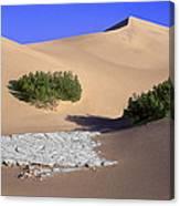 Death Valley Salt Flat Canvas Print